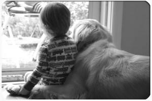 Providing caring pet cremation - boy and dog